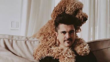 """El perro de Juanes que está causando un gran revuelo en Instagram: """"¿Es un caballo?"""""""