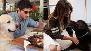 Felicies los cuatro: de Lara Álvarez y Andrés Velencoso a Choco y Herry