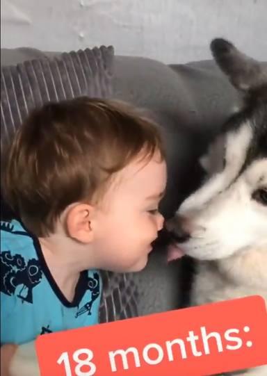 La tierna amistad de un bebé y un perro que corre por las redes