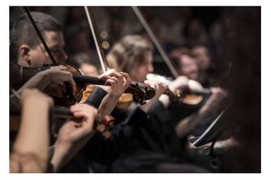 ctv-goc-articulo2 violin