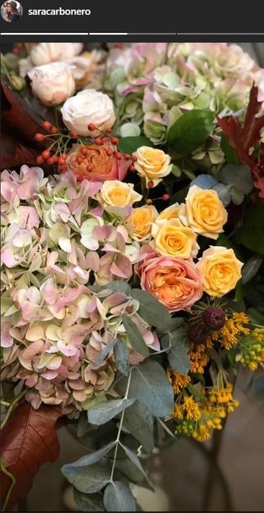 ctv-dko-flores-sara