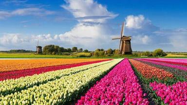 Holanda cambia de nombre y deja de ser Holanda: ¿cómo se llama ahora y a qué se debe esta inesperada decisión?