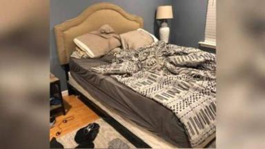 Reto visual perro entre sábanas