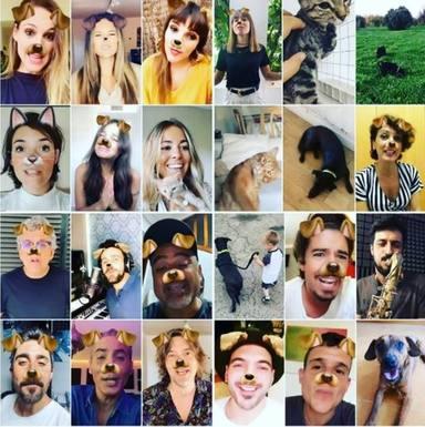 Artistas se unen en una campaña para adoptar animales