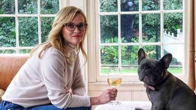 Reese Witherspoon se despide de su amado Bulldog Francés 'Pepper'