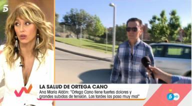 """Ana María Aldón aclara las dudas sobre el estado de salud de Ortega Cano: """"Grandes subidas de tensión"""""""
