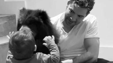 Rosanna Zanetti se derrite con este tierno momento entre David Bisbal, Matteo y su perrita Nala