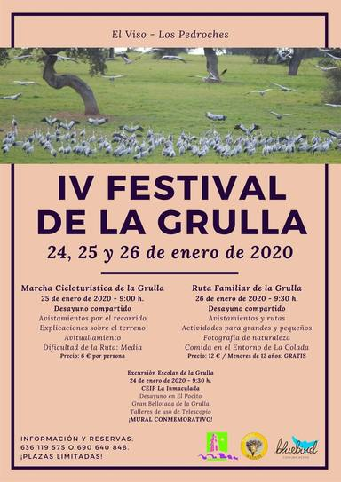 Festival de la Grulla