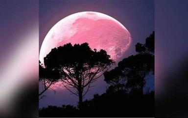 Aquesta setmana podrem veure la Super Lluna Rosa