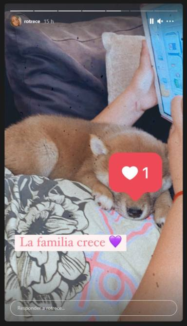 El ilusionante mensaje de Rocío Flores anunciando una bienvenida inesperada: La familia crece