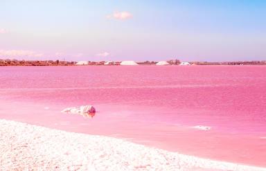 Descubre la laguna rosa de Torrevieja