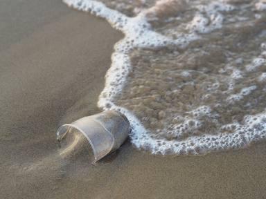 El turisme és el principal responsable de la brossa marina que es troba a les costes mediterrànies