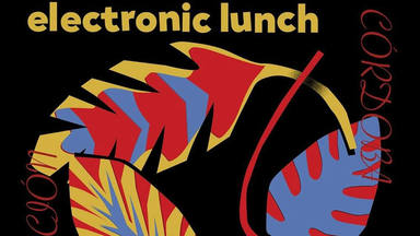 electronic lunch