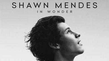 Así será el nuevo documental sobre Shawn Mendes que relata sus momentos más íntimos