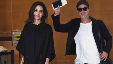 Angelina Jolie y Brad Pitt, nuevo capítulo en la guerra de su divorcio: los viñedos de la discordia