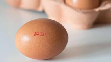 ¿Qué significa la letra del código del huevo?