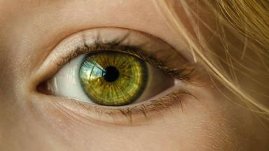 ¿Por qué nuestros ojos tienen el color que tienen y no otro?