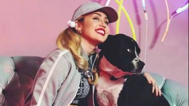 Miley Cyrus comparte una canción entrañable tras fallecer a su perrita Mary Jane