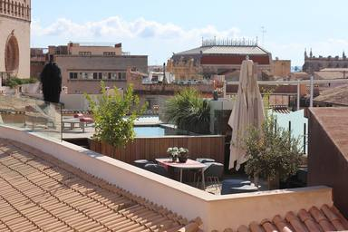 L'oci de Barcelona en els terrats i terrasses dels edificis