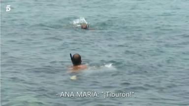 Sola ante el peligro: Avilés rechaza ayudar a Ana María Aldón ante la presencia de un tiburón