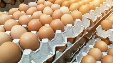 Que los huevos no estén en las neveras en los supermercados tiene un porqué