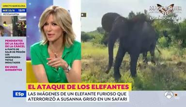 """Susanna Griso sufre las burlas de sus compañeros al revelar el ataque que sufrió en África: """"He quedado fatal"""
