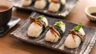 insectos sushi