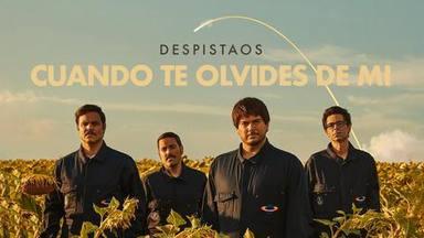 Este es el estreno de Despistaos: 'Cuando te olvides de mí', llega con su videoclip oficial