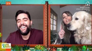 Zapeando: Anna Simón y sus perros provocan un accidente en directo