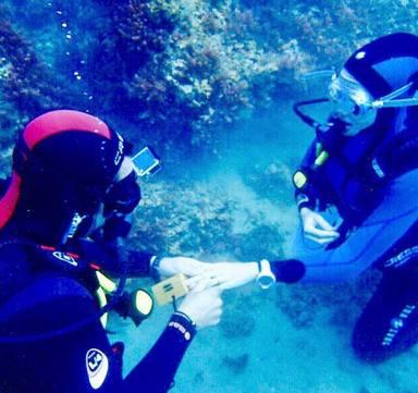 La espectacular petición de matrimonio de Álex Adróver a Patricia Montero bajo el agua