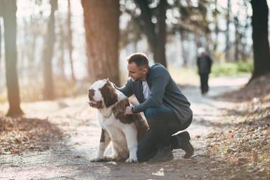 El tremendo error que cometes al pasear a tu perro cada día