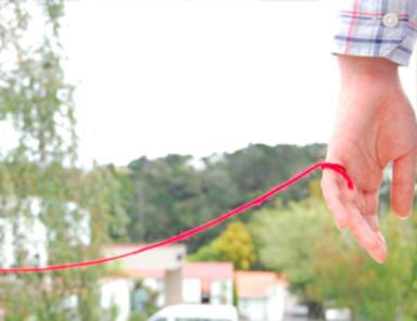 La teoría del hilo rojo