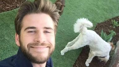 Liam Hemsworth reaparece quince días después de su separación completamente renovado