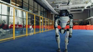 Conoce a los divertidos robots que actualmente arrasan en redes ¡Cómo se mueven!