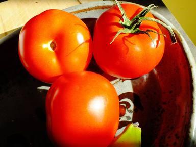 Elegir bien los tomates es básico para conseguir el gazpacho perfecto