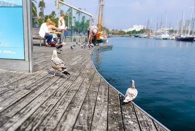 El Port de Barcelona està d'aniversari, celebra els seus 150 anys