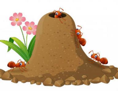 ¿Has notado que el aire está lleno de hormigas voladoras?