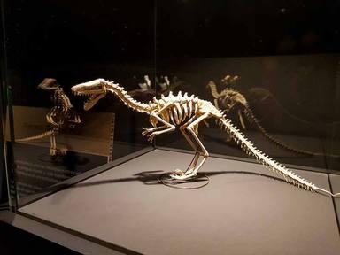 Desde turrón hasta origami: Los museos temáticos más extraños de España que debes conocer