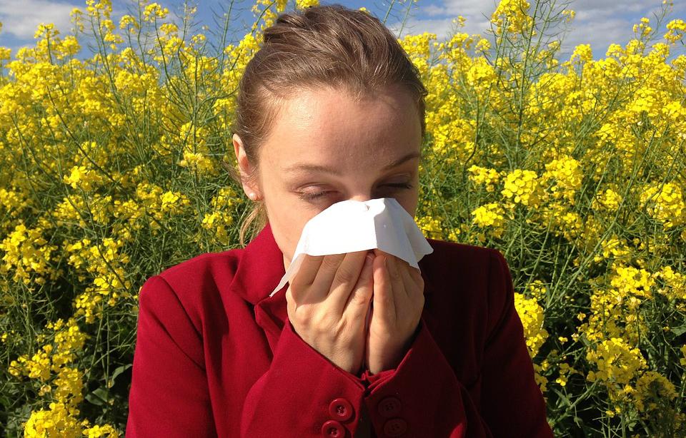 Diez consejos para aliviar las alergias al polen de esta primavera