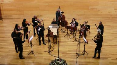 Vivaldi emsemble