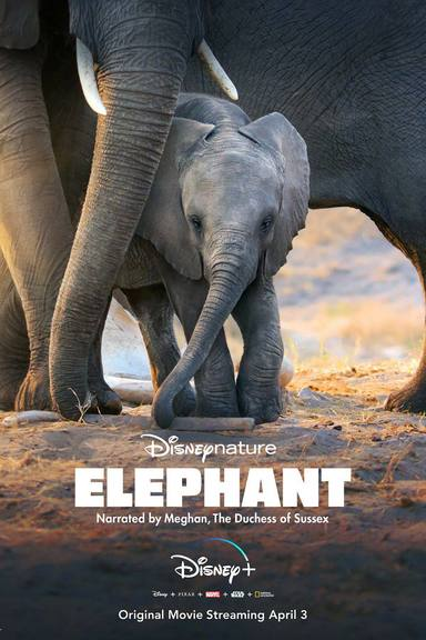 Elephant, el documental narrado por Meghan Markle