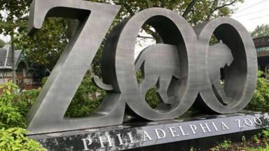 zoologico filadelfia
