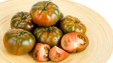 ctv-cct-tomate-raf