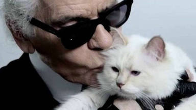 La gata de Karl Lagerfeld heredará parte de su fortuna