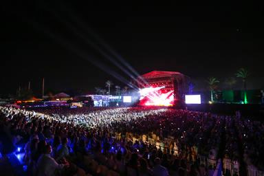 El público del Concert Music Festival disfrutando del espectáculo de David Bisbal