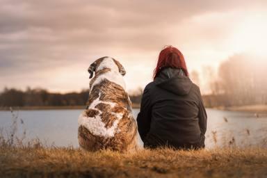 Les diferències entre les persones que trien tenir gossos o gats