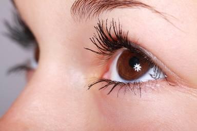 El millor remei natural que t'ajudaran a reduir les ulleres