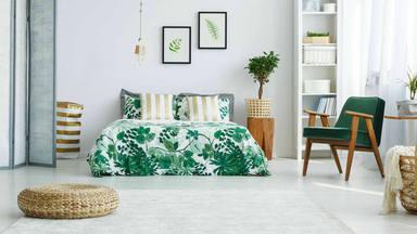 La teoría que acaba con la afirmación de que ''dormir con plantas en la habitación en malo''