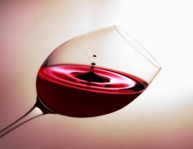 El Bulli Foundation realitza una enciclopèdia dedicada al món del vi
