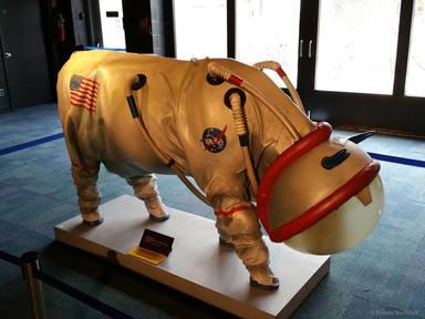 """La pregunta más rara de una entrevista de trabajo: """"¿te llevarías una vaca viva o muerta a Marte?"""""""